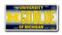 Michigan M GOBLUE 6 x 12 Embossed aluminum license
