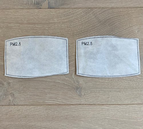 PM 2.5 Mask Filter Insert