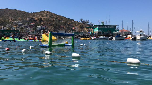 Olympians show you how to Improve your water polo game!