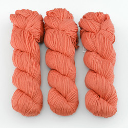 Cascade, Superwash Sport // 827 Coral at  The Loopy Ewe