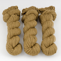 Cascade, Superwash Sport // 262 Dull Gold at  The Loopy Ewe