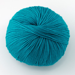 Cascade, 220 Superwash // 812 Turquoise at  The Loopy Ewe