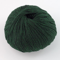 Cascade, 220 Superwash // 866 Forest Heather at  The Loopy Ewe