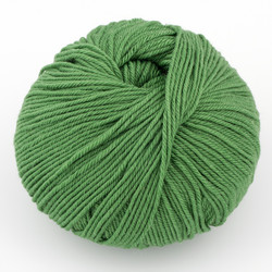 Cascade, 220 Superwash // 254 Mint Green at  The Loopy Ewe