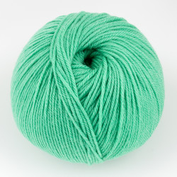 Cascade, 220 Superwash // 288 Green Spruce at  The Loopy Ewe
