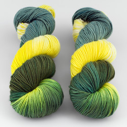 Blue Moon Fiber Arts, Monthly Exclusive Colorway // Aspens - Heavyweight