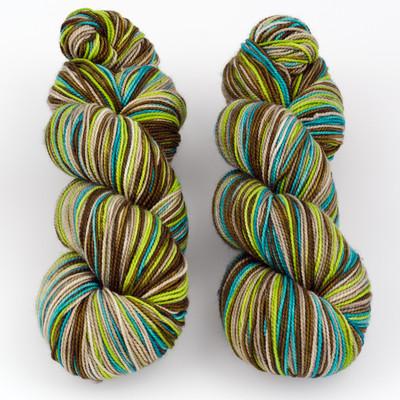 Fibernymph Dye Works, Self Striping // Doubletree