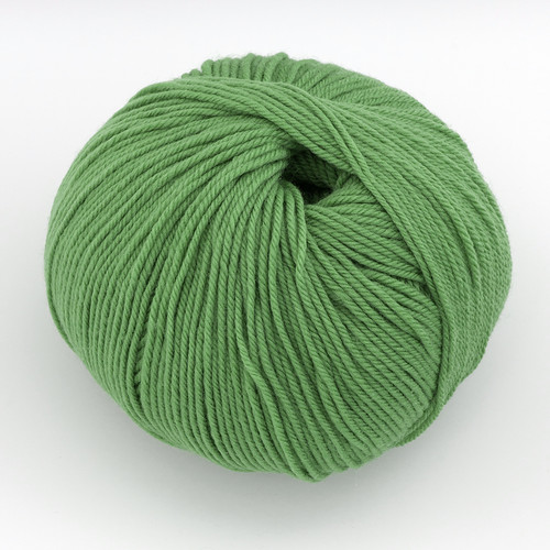 Cascade, 220 Superwash // 226 Peppermint at  The Loopy Ewe