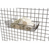 """24"""" Shallow Retail Wire Baskets, 6 Pack"""