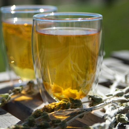 Greek Mountain Tea In Alzheimers Research