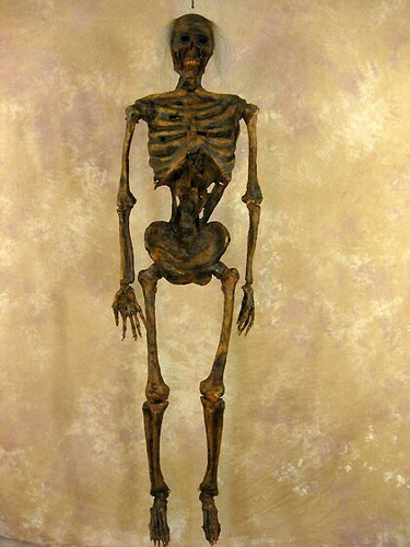 CORPSED 2ND CLASS LIFE SIZE HARVEY SKELETON