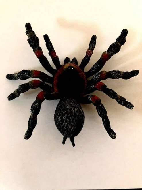"""6"""" SOLID LATEX SPIDER"""