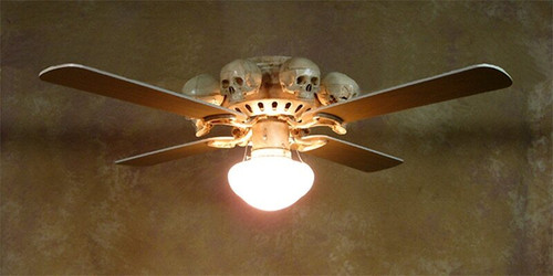 Skull Ceiling Fab With Light