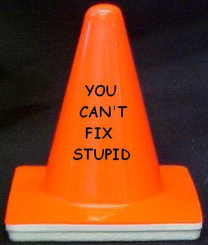 "Novelty 4"" Blaze Cone #005 You Can't Fix Stupid"