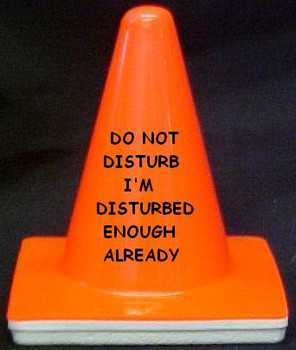 "Novelty 4"" Blaze Cone #367 Do Not Disturb I'm Disturbed Enough Already"