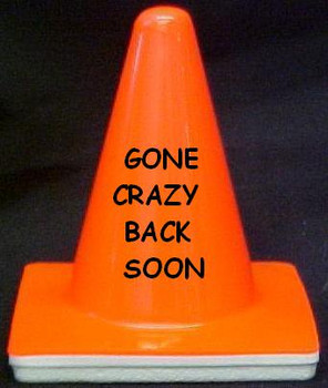 "Novelty 4"" Blaze Cone #040 GONE CRAZY - BACK SOON"