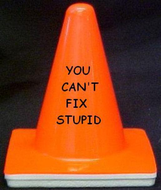 """Novelty 4"""" Blaze Cone #005 You Can't Fix Stupid"""