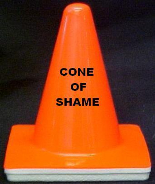"Novelty 4"" Blaze Cone  ""Cone of Shame"""