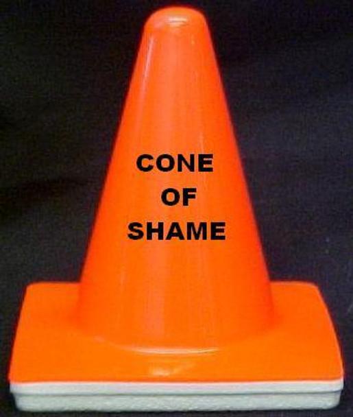 "Novelty 4"" Blaze Cone  ""Cone of Shame"""