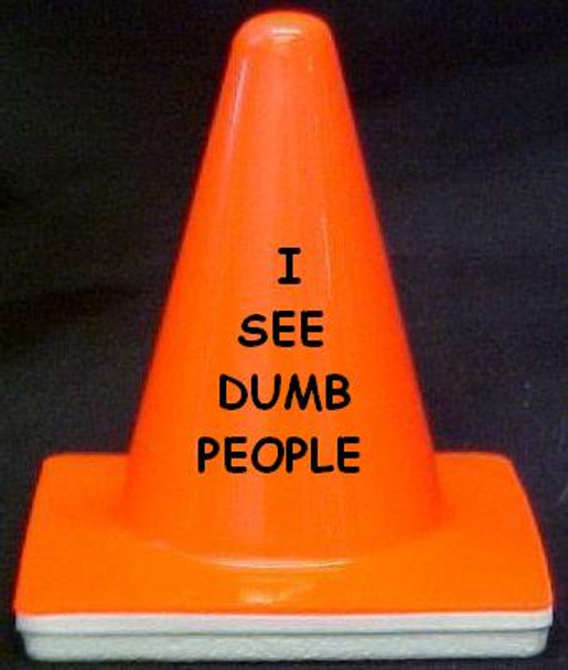 "Novelty 4"" Blaze Cone #044 I See Dumb People"