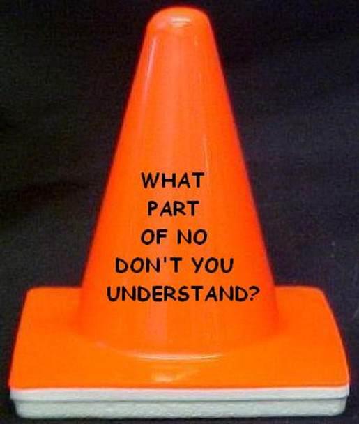 """Novelty 4"""" Blaze Cone #065  WHAT PART OF NO DON'T YOU UNDERSTAND?"""