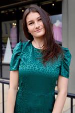 Short Puff Sleeve Animal Jacquard Dress