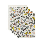Butterfly Kisses Boxed Set of Cards