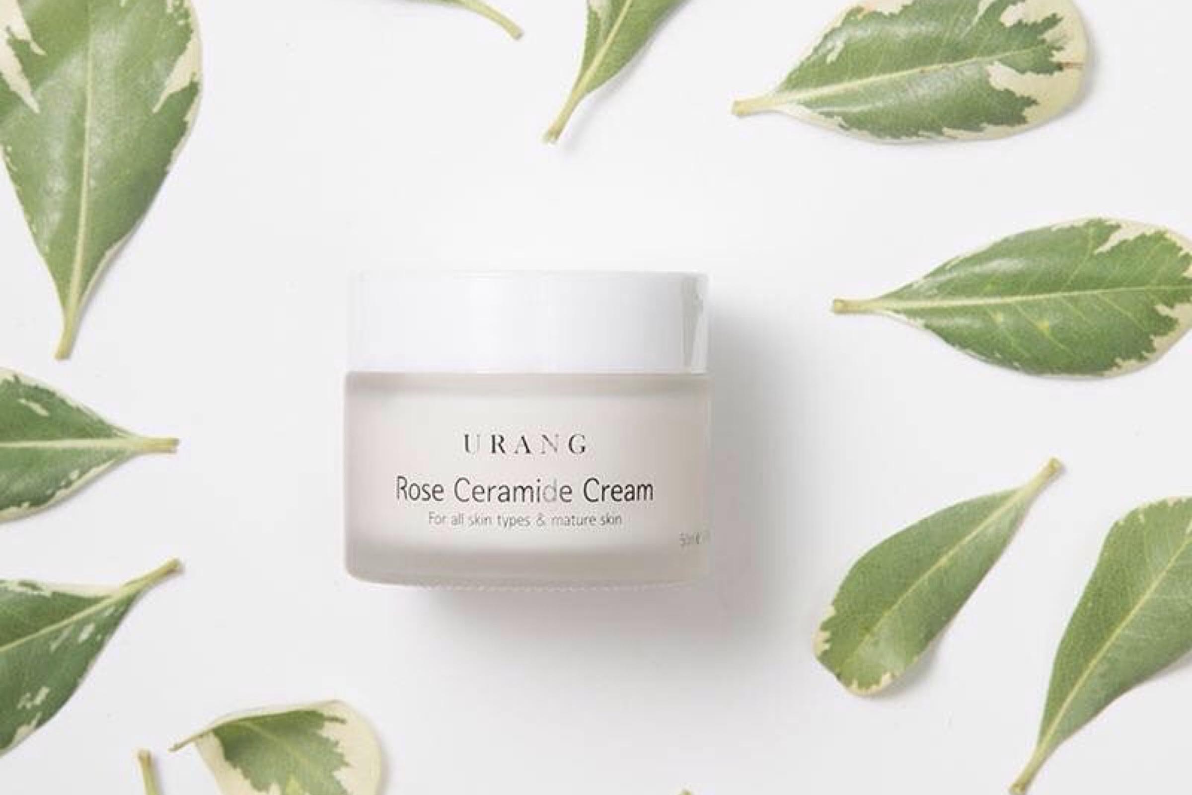 Moisture in Urang Rose Ceramide Cream