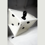 Vac Cube Six Sided Die