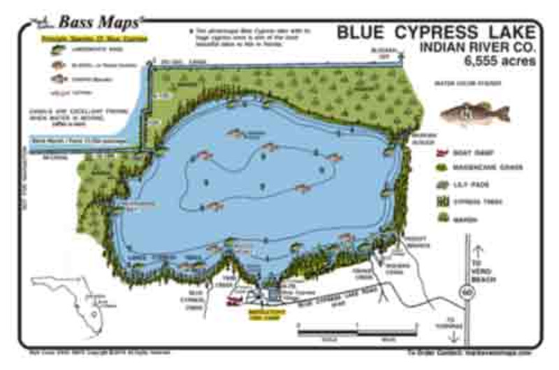 The Blue Cypress Bass Map is a detailed topo/fishing map showing the giant cypress trees as well as Kissimmee grass, and lily pads with marked Bass and Crappie spots in a easy to read waterproof format.