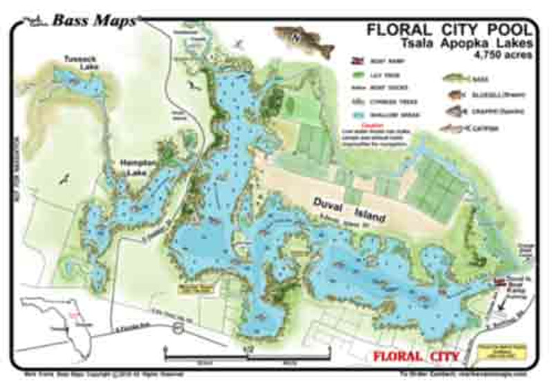 The Floral City Pool of the Tsala Apopka lakes is a( 2 - sided)  depth / fishing map. Fishing features include vegetation and the extensive canals to be found here. The map has the best Bass and Crappie spots marked in an easy to read waterproof format.