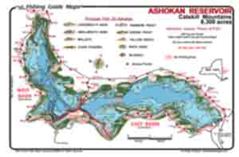 This is the map of Ashokan Reservoir. Its colorful depictions of depth  contours and dropoffs are invaluable to anglers using this waterproof map.