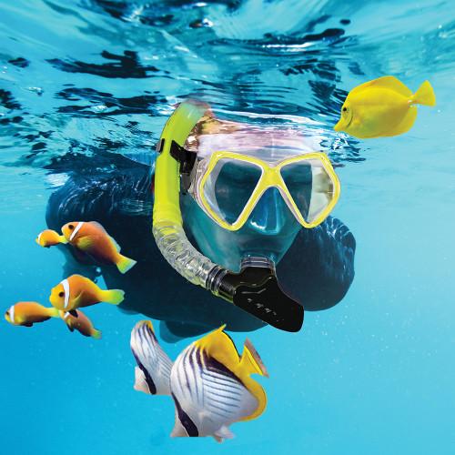 Aqua Leisure Dyna Adult 5-Piece Dive Set - Adult Size M\/L Mens 4.5-8.5\/Ladies 5.5-9.5 [DPX18230S3M]