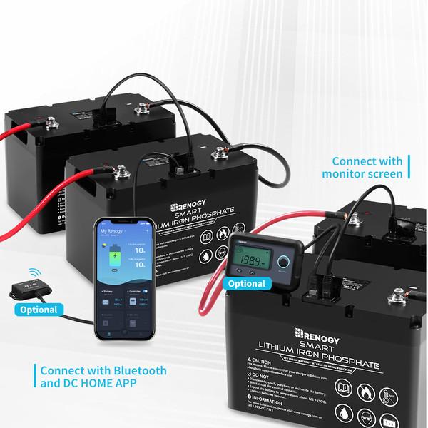 12V 100Ah Smart Lithium Iron Phosphate Battery w/ Self-Heating Function
