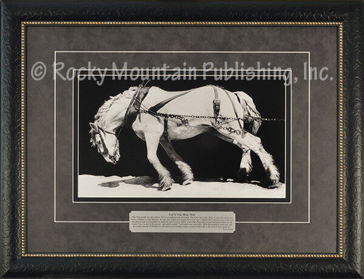 Pull It One More Mile Ross Taylor Framed Western Art White Horse Straining To Pull Load