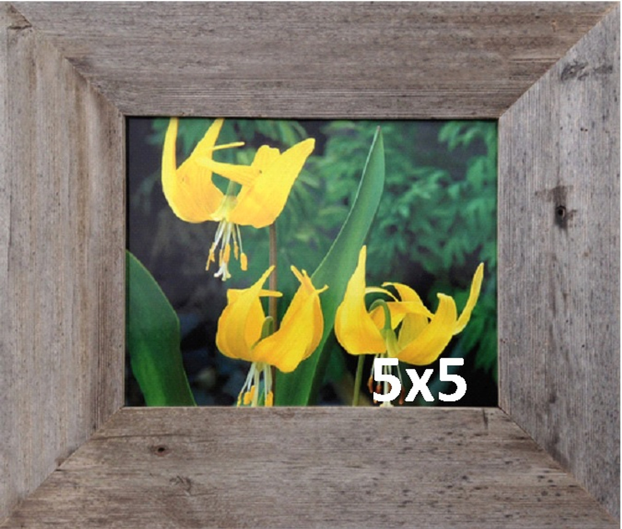 """Lot of 5 8x10 Rustic Reclaimed Barnwood Picture Frame 2/"""" Wide FREE SHIPPING!!!"""