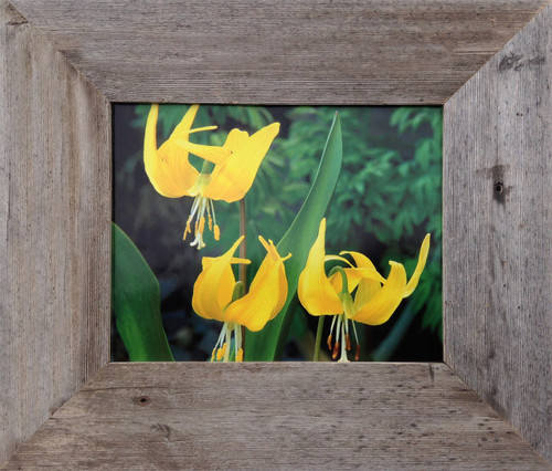 Simple Yellow Wood Photo Poster Canvas Art Picture Frame Rustic Barnwood