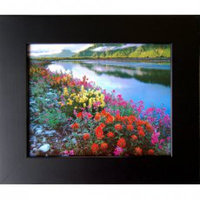 Basic Black Picture Frames 85