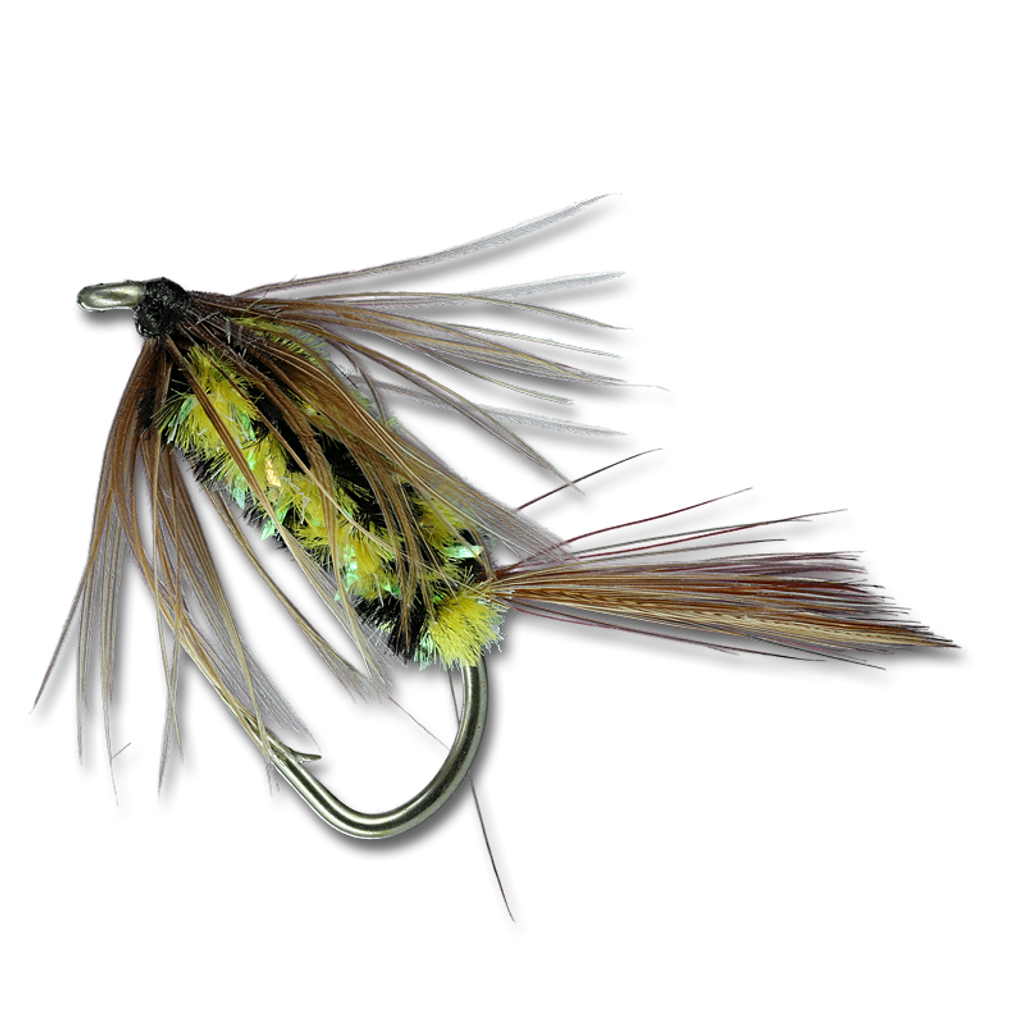 Brindle Bug - #8
