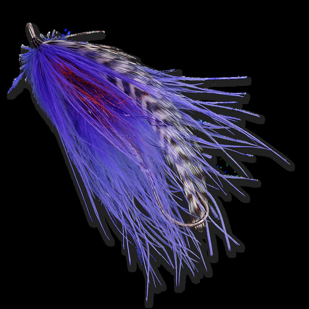 Burnt Chicken - Purple