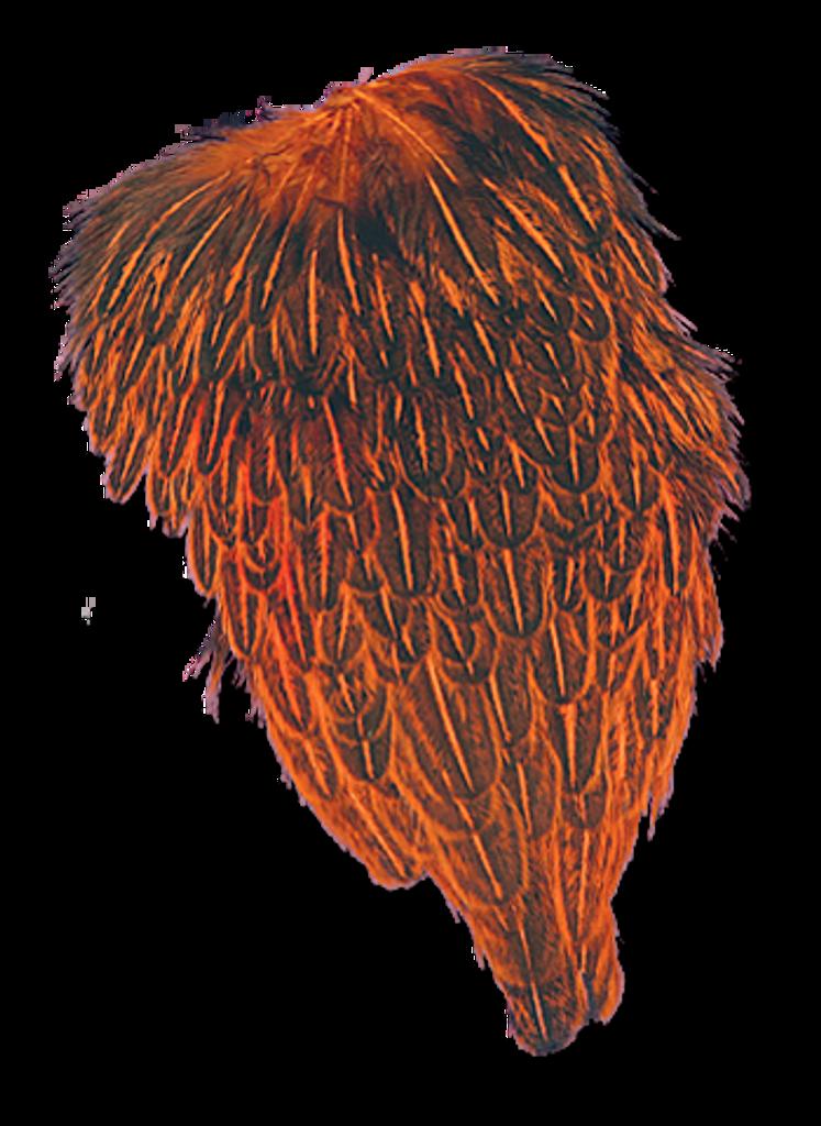 Hen Back - Crawfish Orange