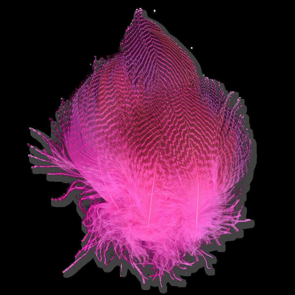 Dyed Gadwall - Fl. Pink