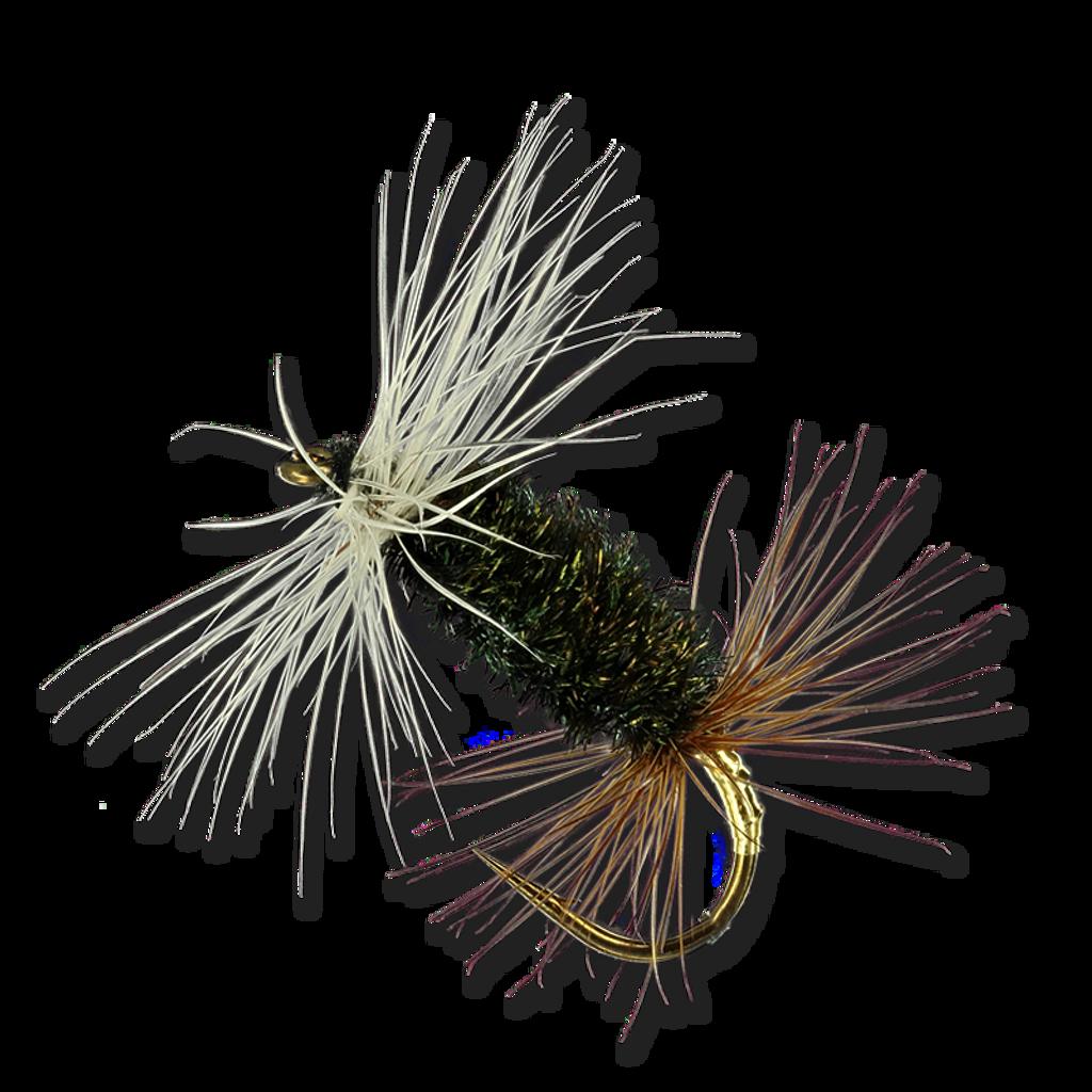 Peacock Herl