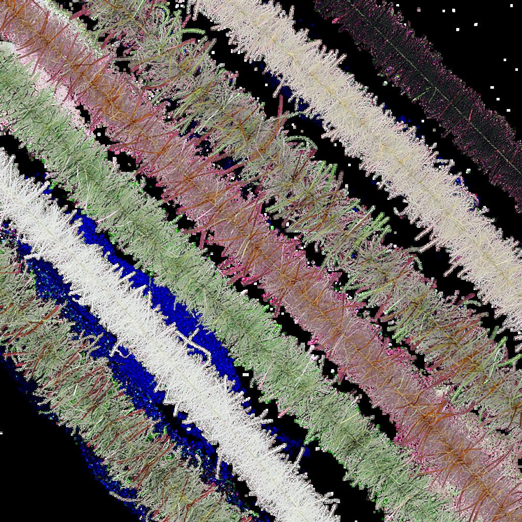 "Enrico Puglisi's Tarantula Brushes - .50"" Wide"