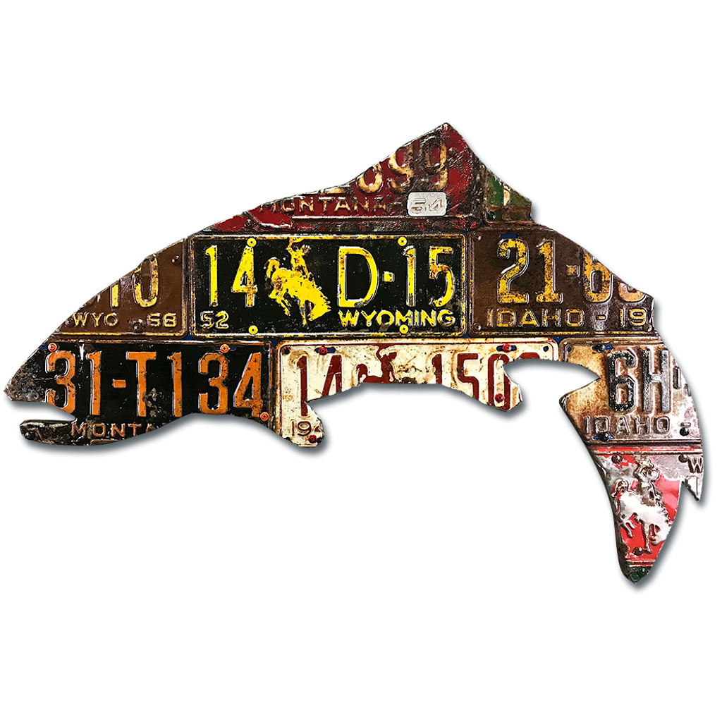 Antique Mixed Western States Trout License Plate Art