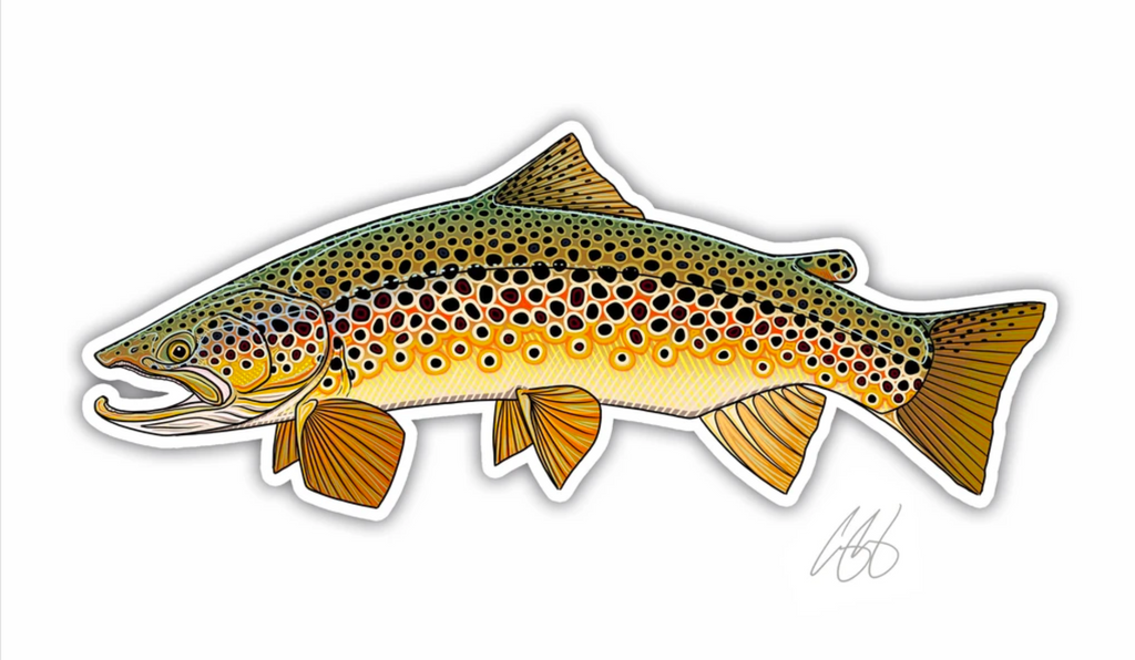 Casey Underwood Fish Decal - Brown Trout