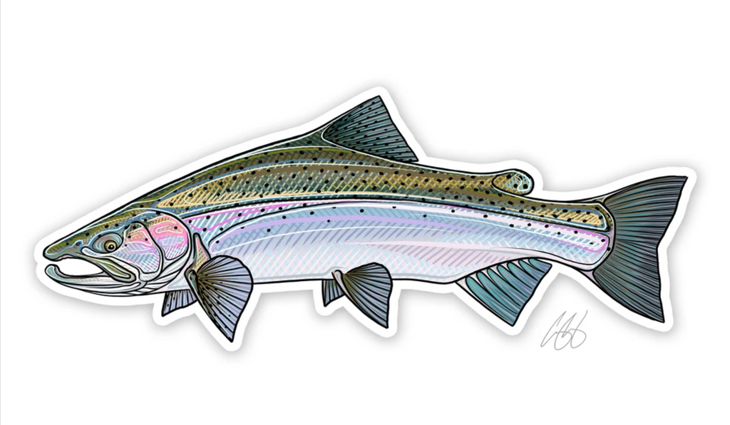 Casey Underwood Fish Decal - Steelhead