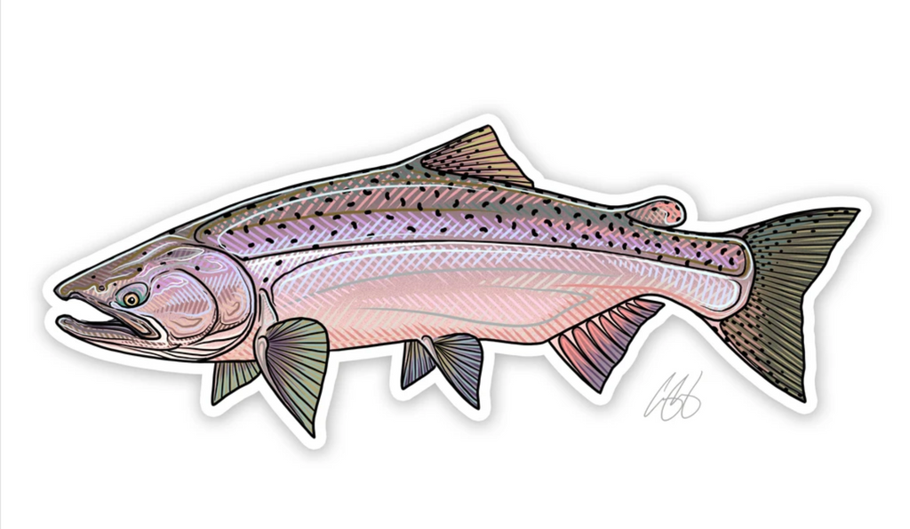 "Casey Underwood Fish Decal - Chinook ""King"" Salmon"
