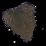Hen Back - Black