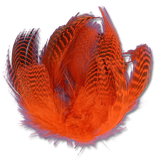 Dyed Teal Flank - Orange